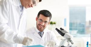 Laboratory work